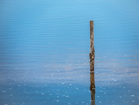 Minimalist, Palo, Beautiful, Simple, Water, Minimalism