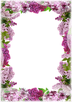 Lilac, Flowers, Floral, Photo Frame, Purple Flowers