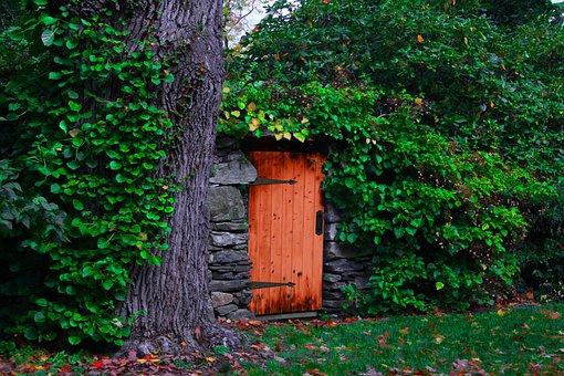 Door, Rustic, Vines, Hinges