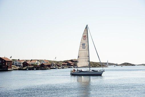 Sailboat, Sea Life, Sea, Boat, Ship, Sailing