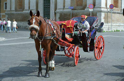 Horse, Chariot, Traffic, City, Roma, Italy
