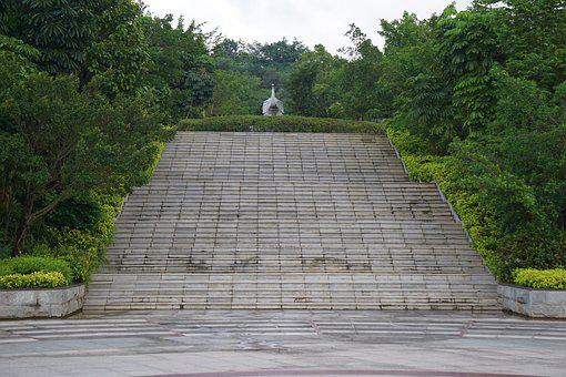 Ladder, Green