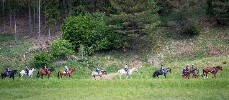 Pentecost, Horses, Ride, Coach, Landscape, Nature