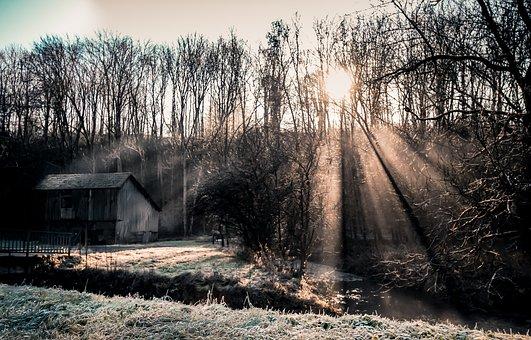 Cabin, Dusk, Landscape, Nature, Germany, Sachsenheim