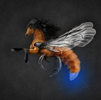 Horse, Science Fiction, Photomanipulation