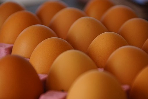 Eggs, Brown, Tray, Poultry