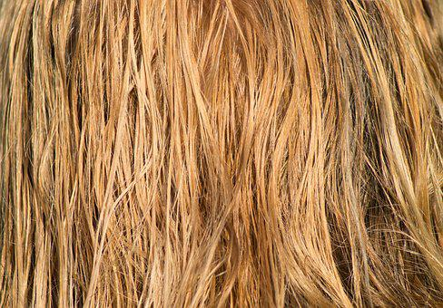 Hair, Blond, Wet, Combed, Long Hair, Water, Wind