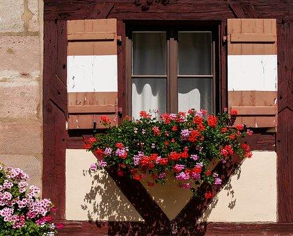 Architecture, Window, Building, Flower, Flower Box