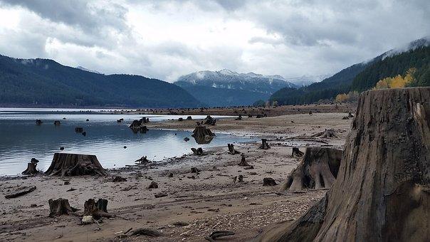 Detroit Lake, Oregon, Stump, Lake Bed, Drought, Dry