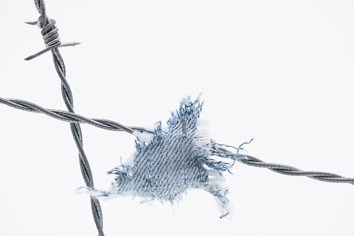 Barbed Wire, Fabric, Rip, Torn, Jeans, Fence, Wire