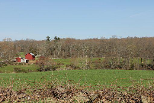 Barn, Countryside, Green, Pasture, Grass, Outdoor