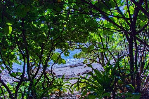Okinawa, Sea, Blue, Water, Reflection, Island