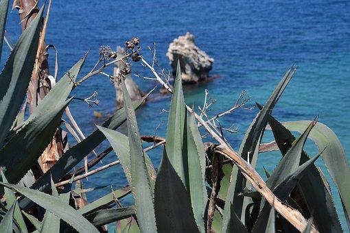 Sicily, Sea, Palermo, Summer, The Sea Away