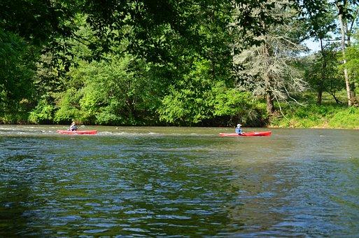 Kayaking, Paddling, Kayak, Sport, Paddle, Water, River