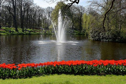 Holland, Tulips, Keukenhof, Spring, Netherlands, Flower