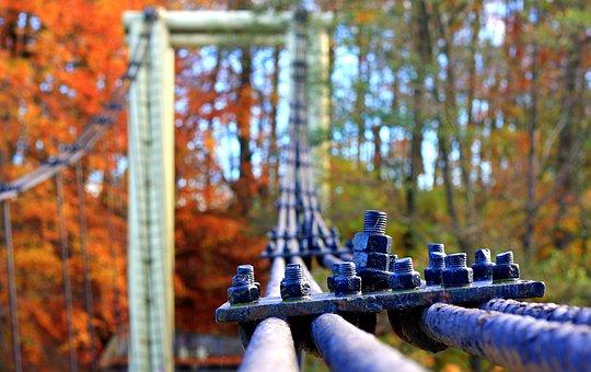 Cables Steel, Bridge, Autumn, Bridge Cable