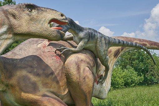 Dinosaur, Veloziraptor, Carnivores, Attack, Carnivorous