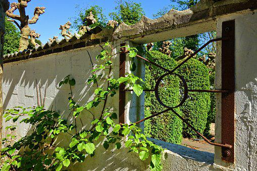 Wall, Window, Window Opening, Bars, Foliage, Tree