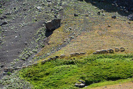 Mountain, Highland, Nature, Green, Landscape, Grass