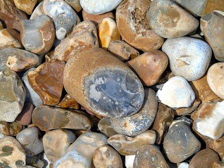 Pebble, Beach, Jurassic, Lyme, Regis, Nature, Sea