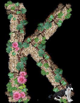 Alphabet, Letter, K, Rustic, Timber, Bark