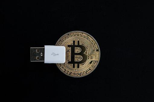 Cryptocurrency, Ledger, Money, Business, Digital
