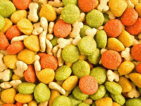 Food, Dog, Animal, Pet, Dog Food, Nutrition, Puppy