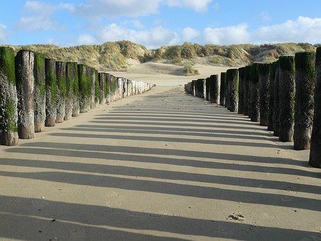Sea, Beach, Poles, Coast, Zealand, Dunes, Breakwaters