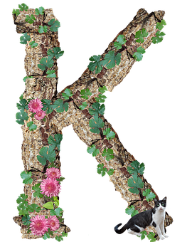 Alphabet, Letter, K, Rustic, Timber, Bark, Cut Out