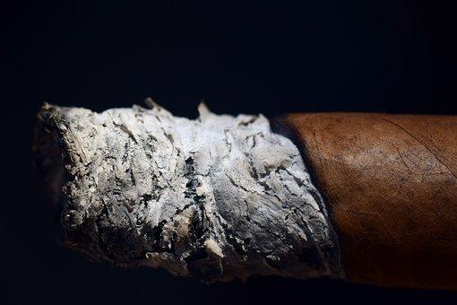 Ash, Cigar, Smoking, Enjoy, Tobacco, Tobacco Leaves