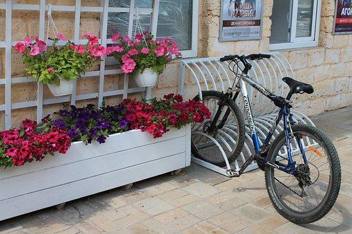 Bike, Sun, Ukraine, Odessa, Arcadia, Flowers, Travel