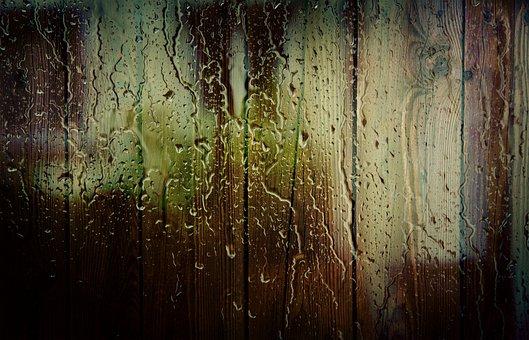 Spray, Tree, Drops, Trees, Water, Rain, Drops Of Water