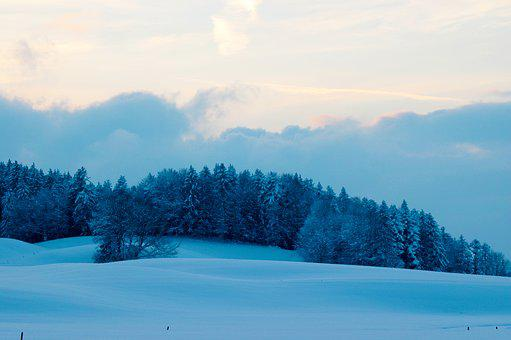 Winter, Landscape, Blue, Christmas, Fog, Scenic, Mood
