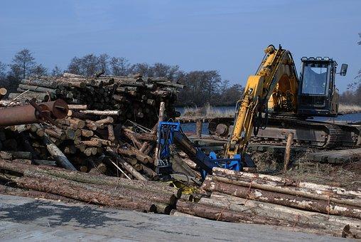 Excavator, Blue Sky, Trees, Wood, Hydraulic, Machinery