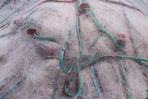 Net, Fishing Net, Fishing, Fish, Cord, Float, Nylon