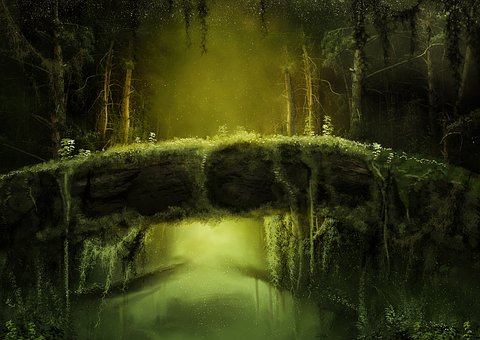 Forest, Mysterious, Fantasy, Gloomy, Nature, Fairy Tale