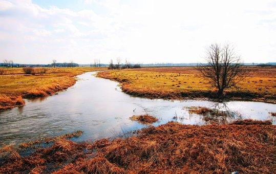 The Brook, River, Landscape, Water, Nature, Brook