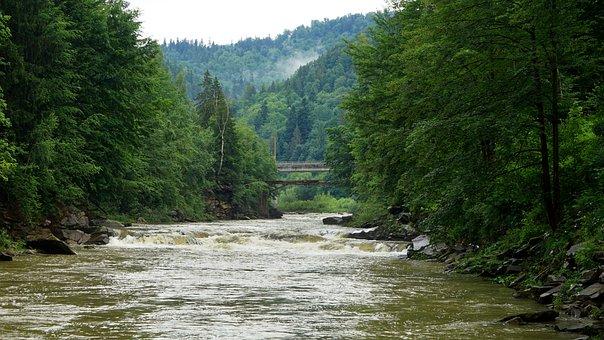 Yaremche, Mountain River, The Carpathians, Landscape