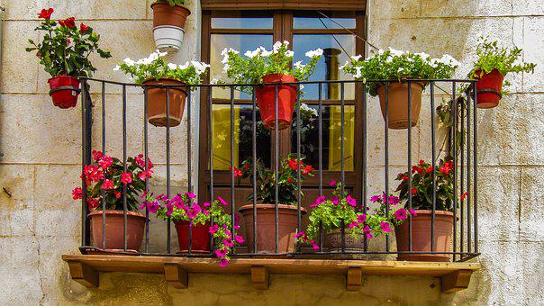 Balcony, Window, Flowers, Facade, Apartment