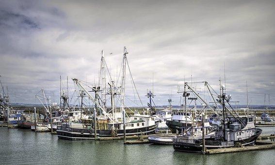 Westport Fishing Fleet, Long Line, Fishing, Port, Boat