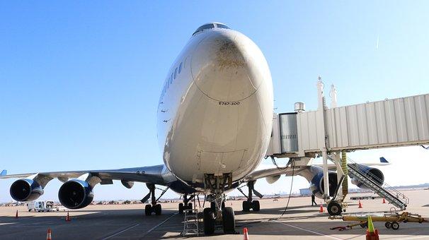 Travel, Transportation, Flight, Trip, Vacation, Wing