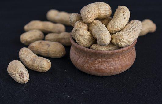 Walnut, Nuts, Peanuts, Fruit, Nutrition, Nutlet