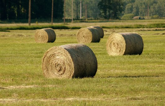 Hay, Bales, Landscape, Field, Village, Agriculture