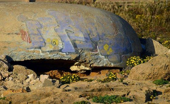 Bunker, Old, Leave, World War, Flowers, Rocky, Coast