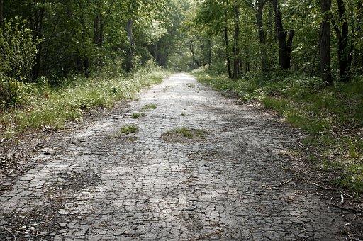 Abandoned Road, Road, Abandoned, Asphalt, Old, Path