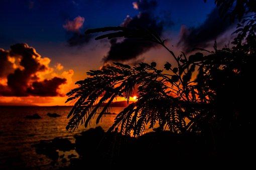 Sunset, Sun, Sky, At Dusk, Cloud, Japan, Sea, Natural