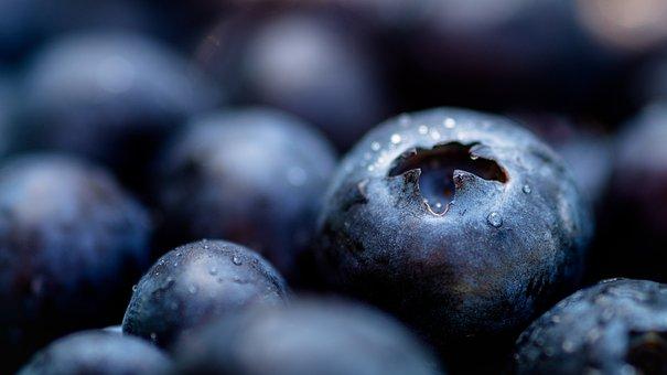 Blue Berries, Berries, Healthy, Fruit, Blue, Oatmeal