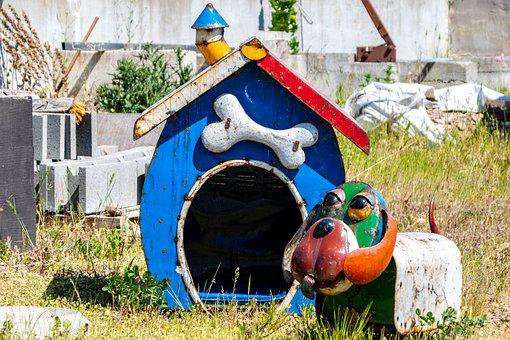 Doghouse, Colors, Bone
