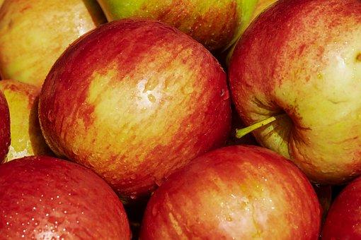 Apple, Variety, Gala, Fruit, Red, Kernobstgewaechs