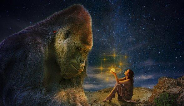 Gorilla, Glow, Ape, Watch, View, Light, Marvel, Heat